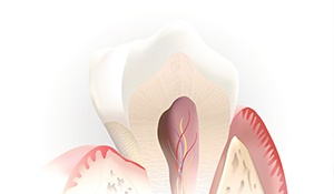 Animation of inside of tooth